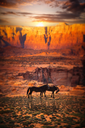 Grand Canyon National Park seen from Desert View. Horses are walking.