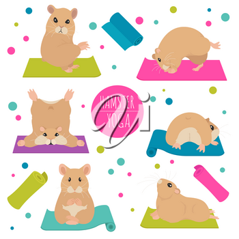 Hamsters yoga poses and exercises. Cute cartoon clipart set. Vector illustration
