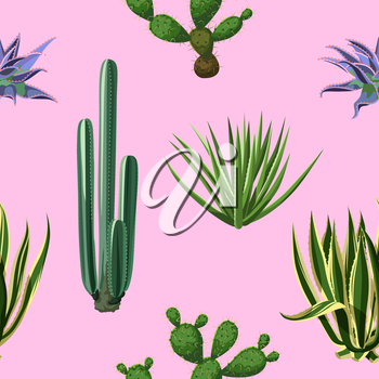 Seamless pattern with cactuses and succulents set. Plants of desert.
