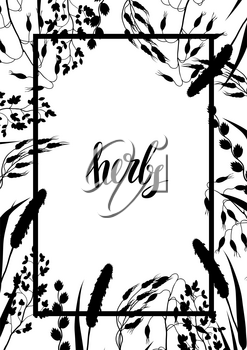 Frame with herbs and cereal grass silhouettes. Floral design of meadow plants.