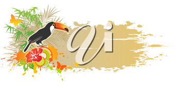 vector tropical summer background with toucan