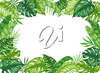 Tropical summer frame with green palm leaves on a white background. Hand drawn vector illustration