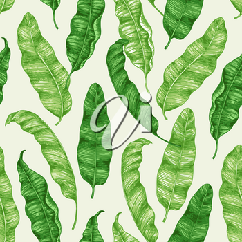 Tropical seamless pattern with green banana leaves. Hand drawn vintage vector background.