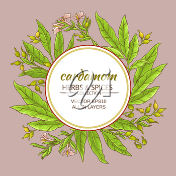 cardamom branches vector frame on color background