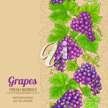 grapes vector pattern on color background